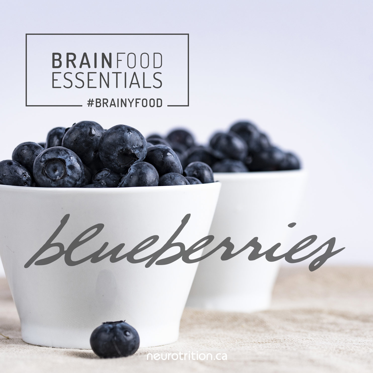 Brain Food Essentials :: Blueberries