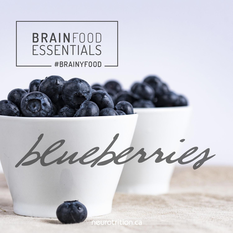 Brain Food Essentials :: Blueberries