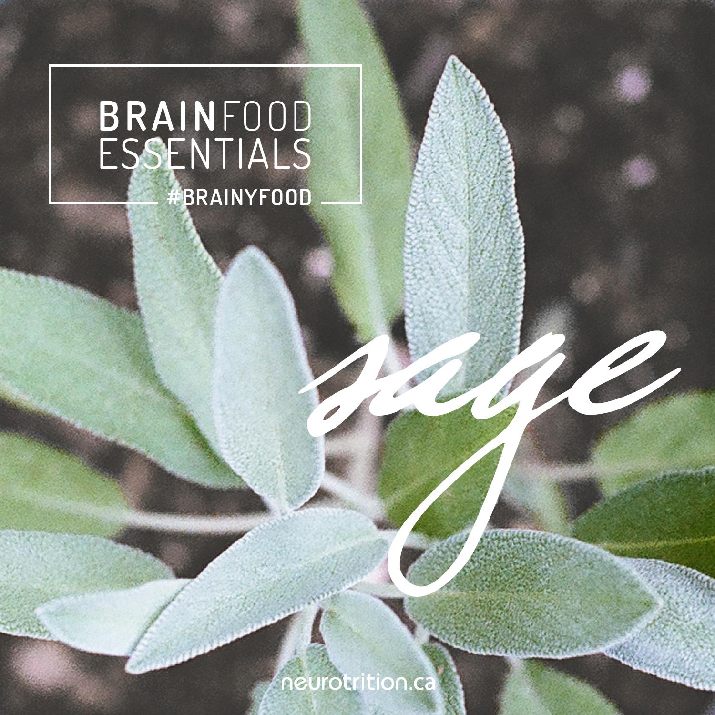 Brain Food Essentials: Sage