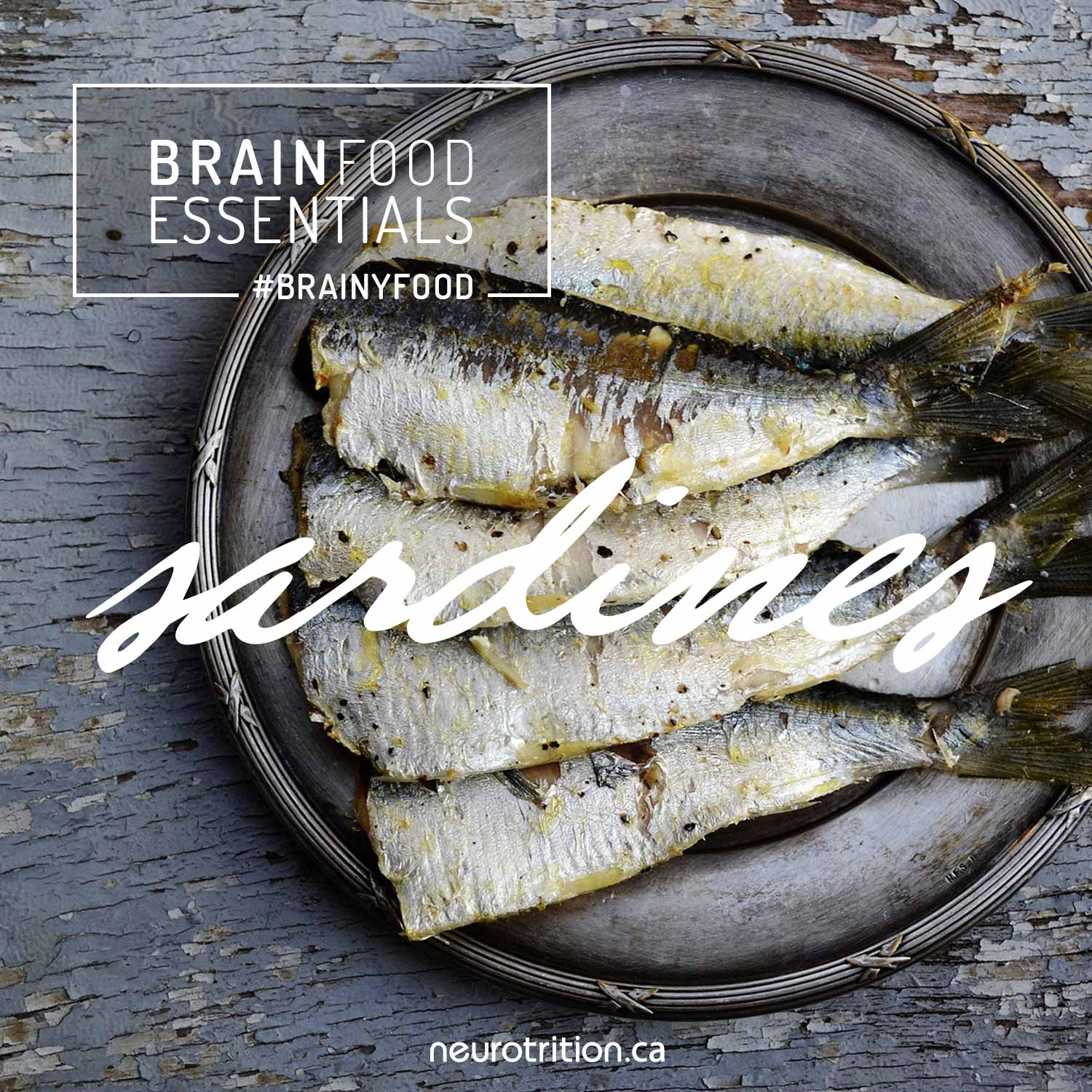 Brain Food Essentials: Sardines
