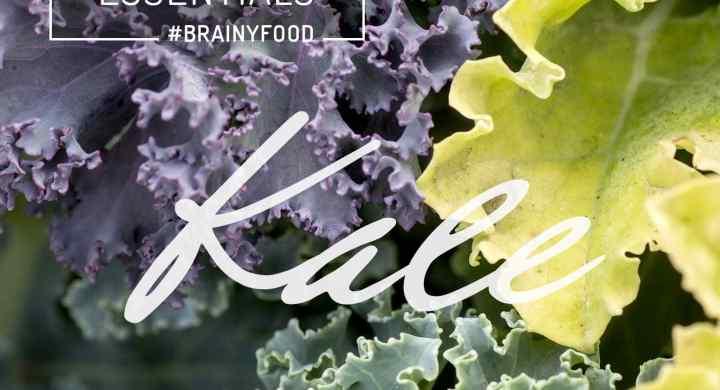 Brain Food Essentials :: Kale